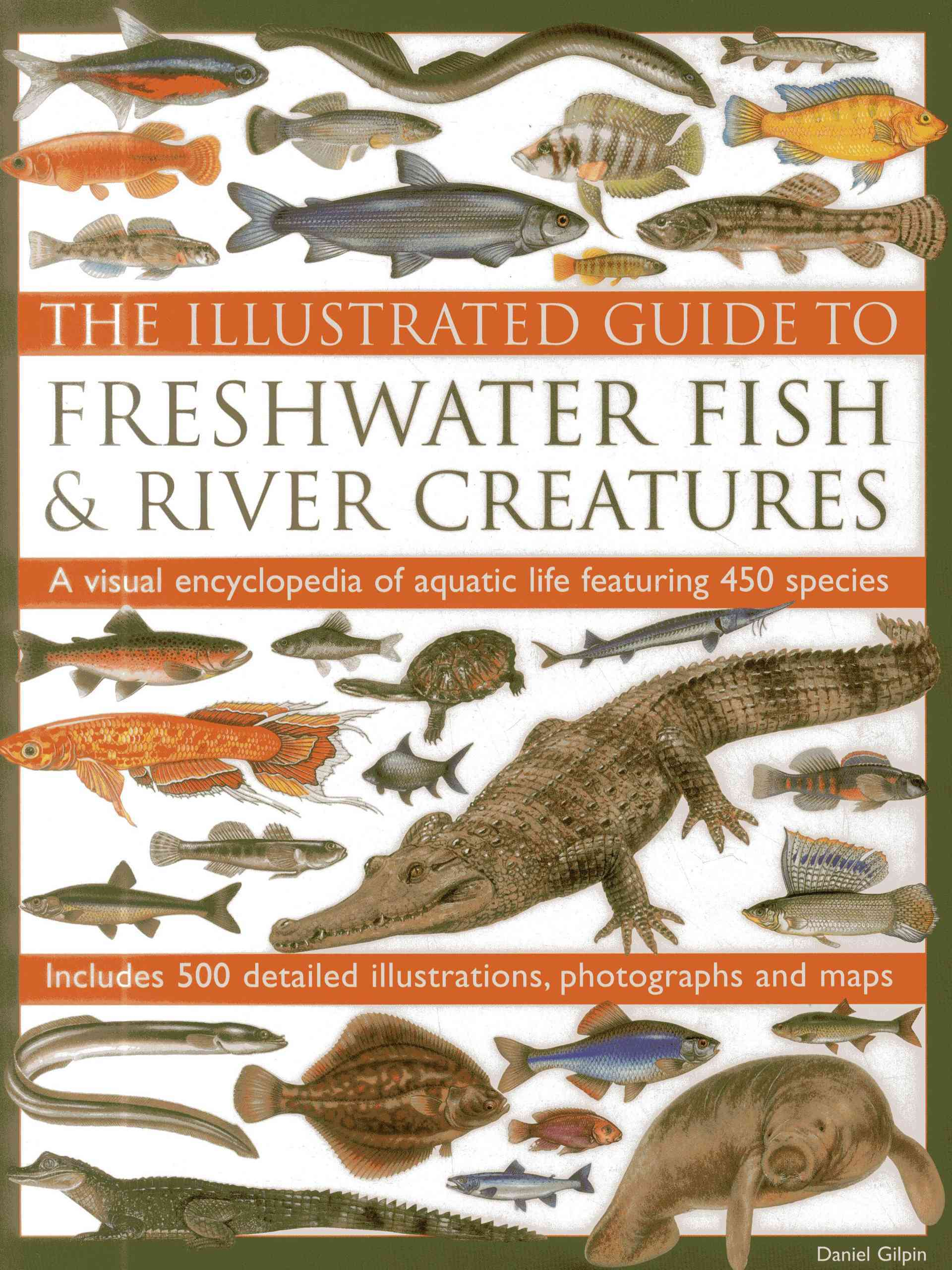 The Illustrated Guide to Freshwater Fish & River Creatures By Gilpin, Daniel